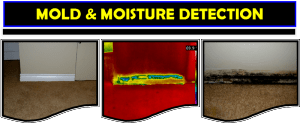 thermal imaging clearwater florida