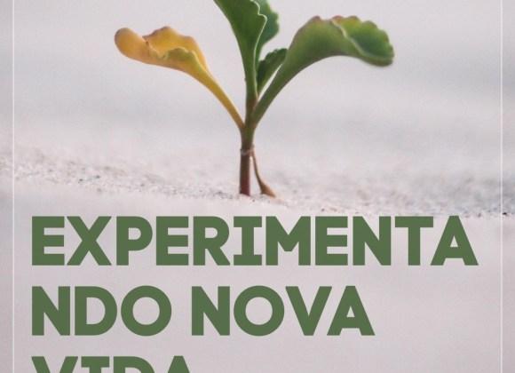 #13 Experimentando Nova Vida