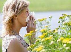 Kako razlikovati prehladu i alergiju