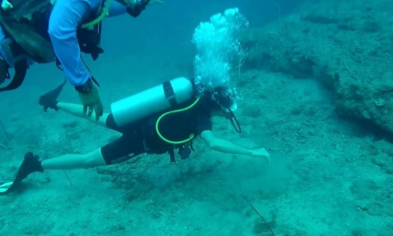 Long term Diver Havelock