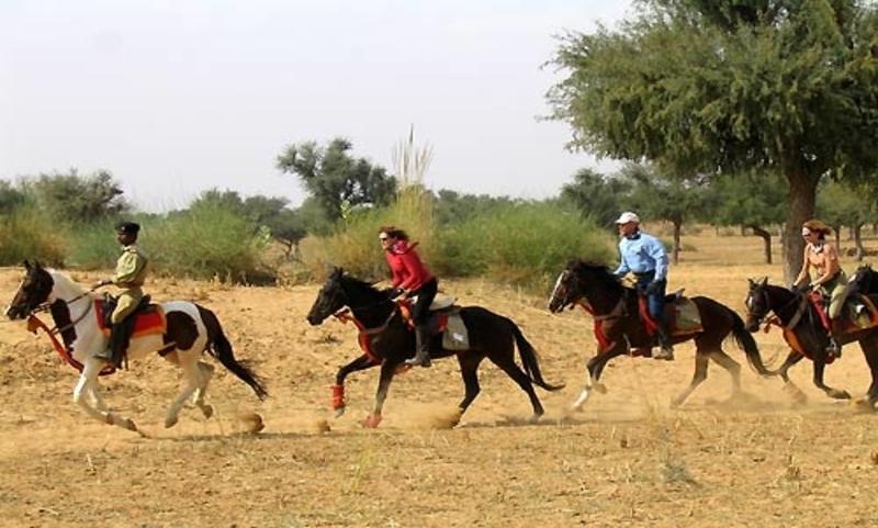 Rural Rajasthan Horse Ride