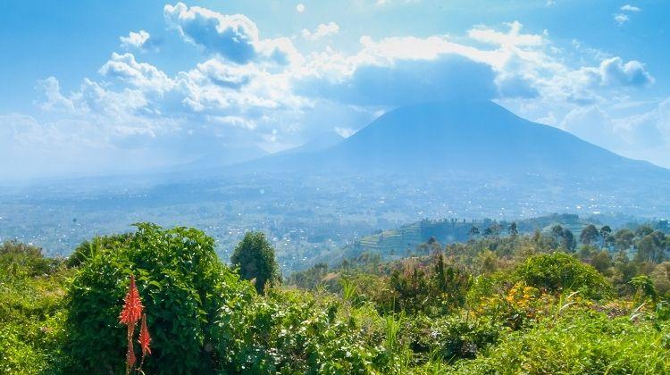 Rwanda Highlights