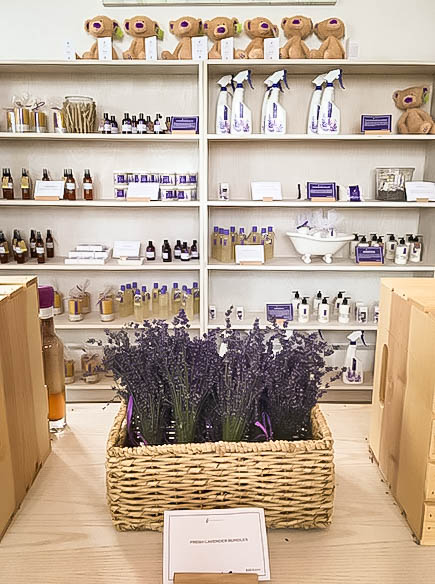 Terre Bleu Lavender Farm Gift Shop