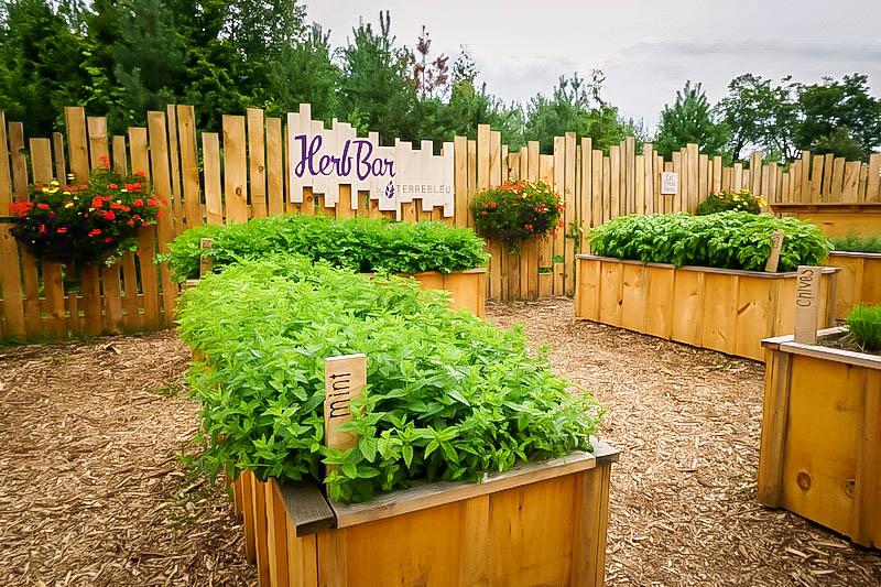 Terre Bleu Lavender Farm Herb Bar