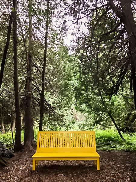 Terre Bleu Lavender Farm Yellow Bench