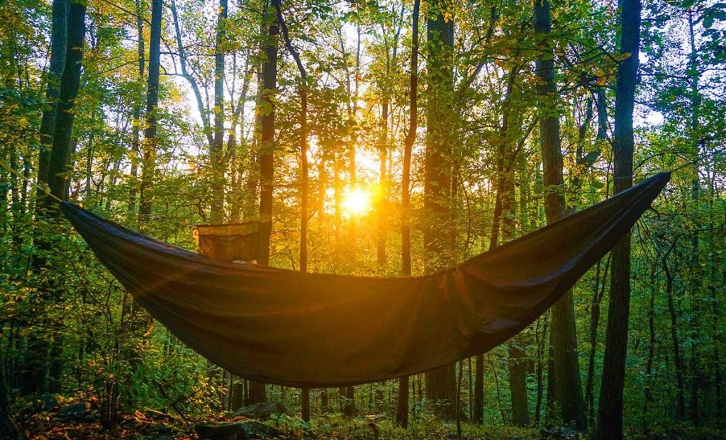 hammock_dawn_at_blueridge_va-1200