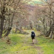 tips for your first backpacking trip