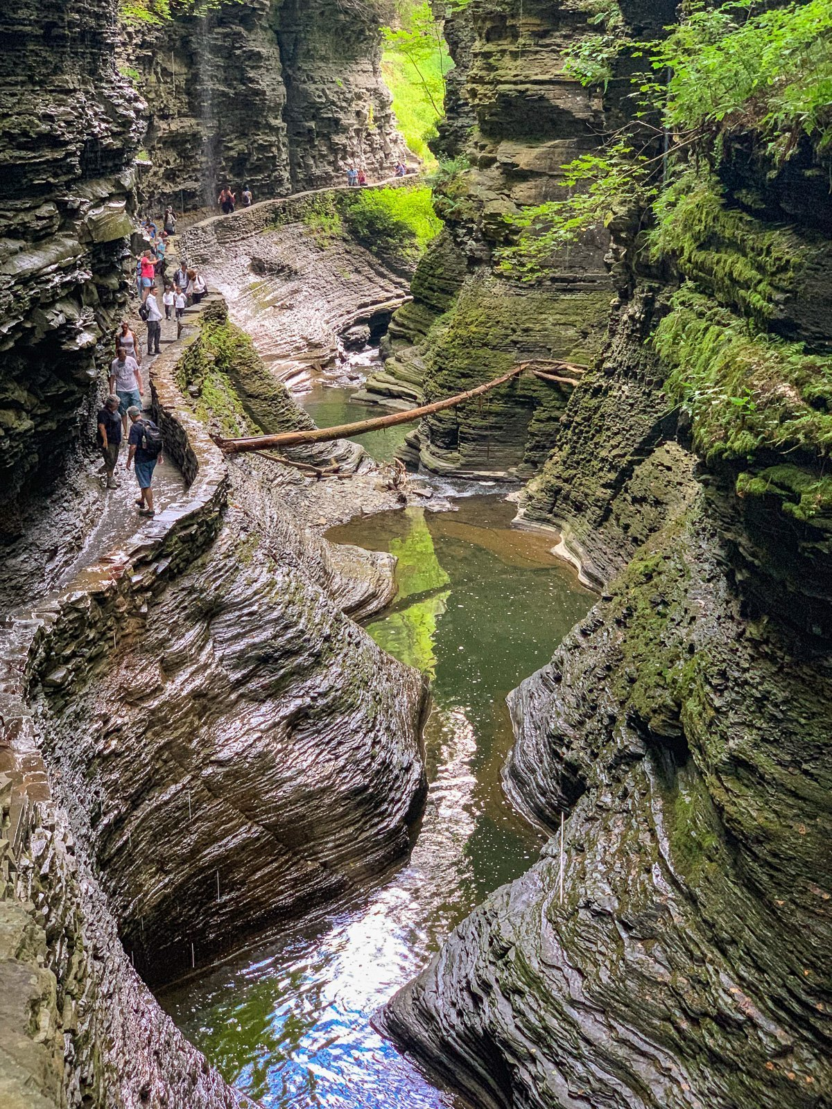 Finger Lakes Gorges