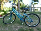 Womens Rental Comfort Bike