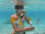 Snorkeler in Rarotonga