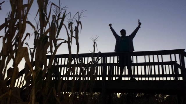 Uncle Shuck's Corn Maze Georgia Corn Maze Bridge