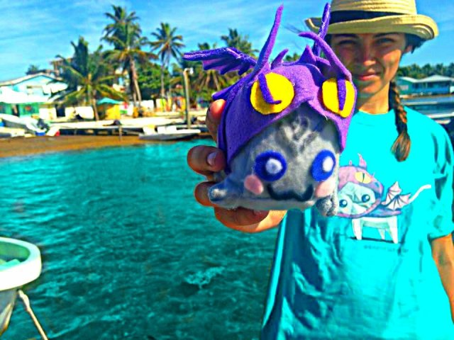 How to swim with sharks Adventure Dragon in Caye Caulker Belize