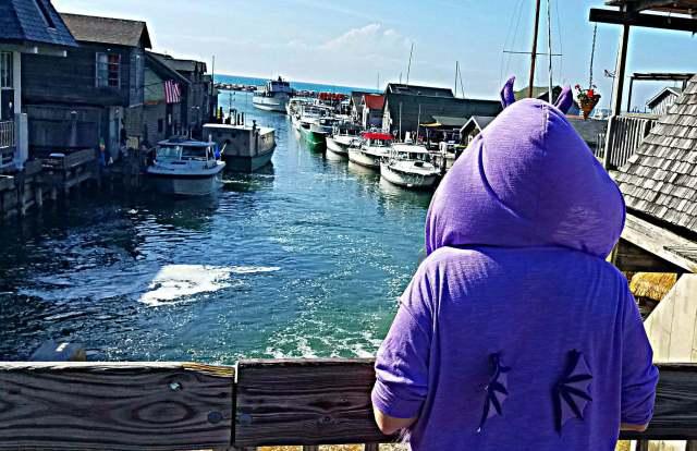 Fishtown USA Leland MI Adventure Dragon