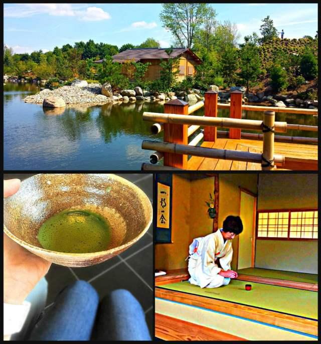 Richard & Helen DeVos JapaneseGarden Tea House and Tea Ceremony Frederik Meijer Gardens Adventure Dragon