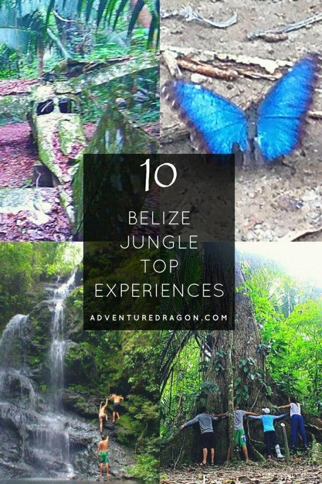 Belize Jungle Top Ten