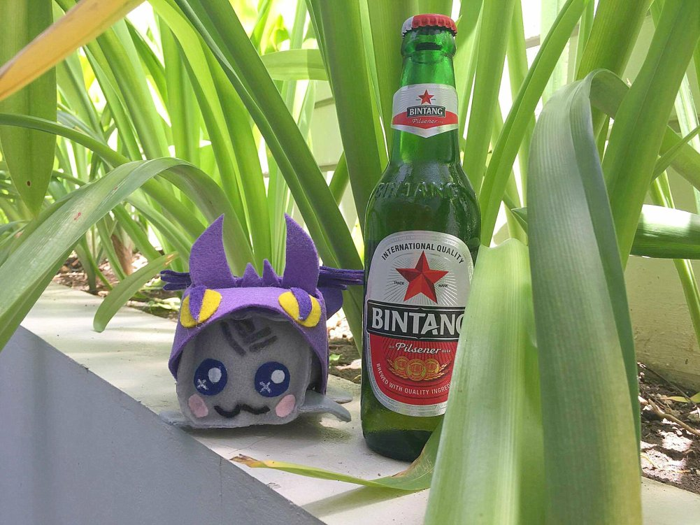 Bali Beer Bintang - Bali top 10