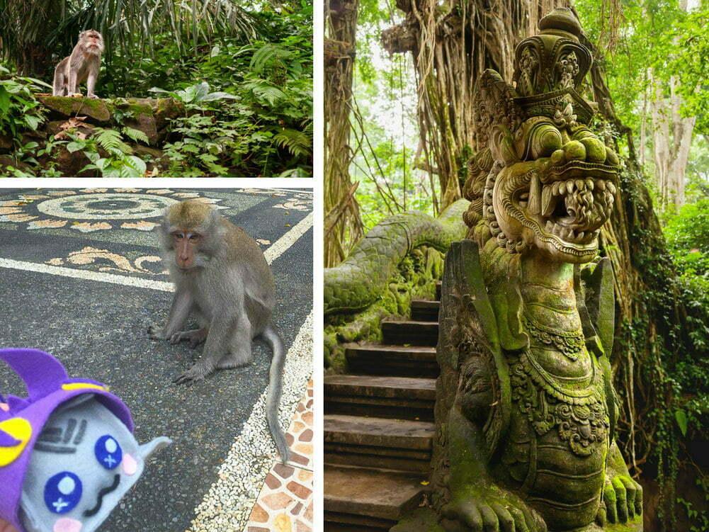 Bali Sacred Monkey Forest Sanctuary - Bali top 10
