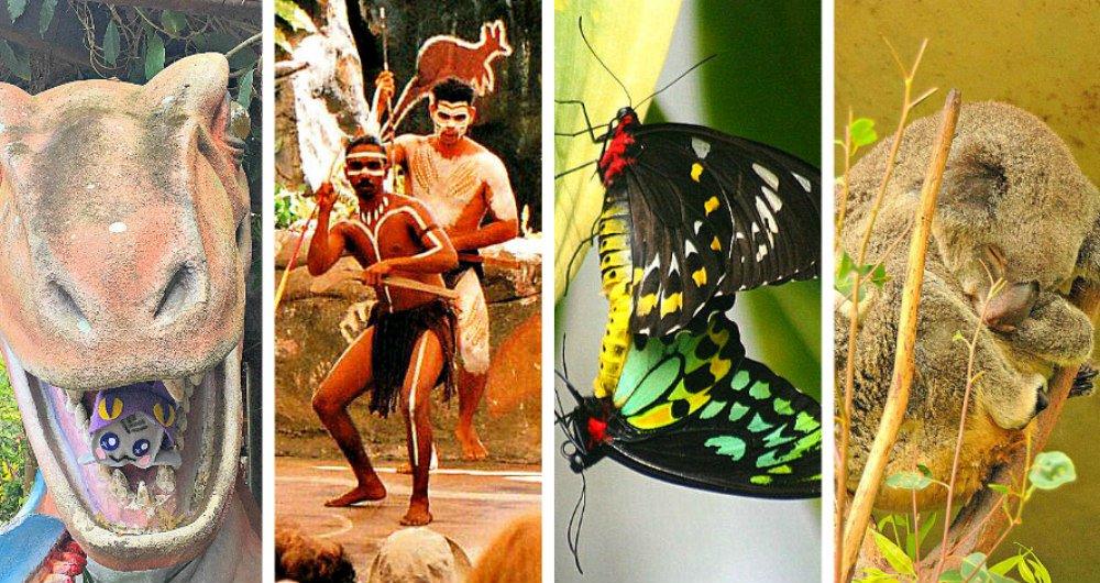 Kuranda Village - Cairns Australia Tourist Attractions