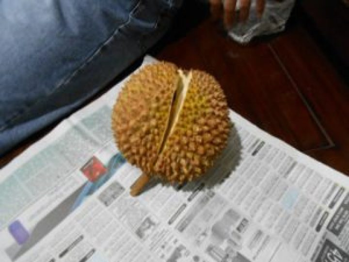 Never open durian in the car!