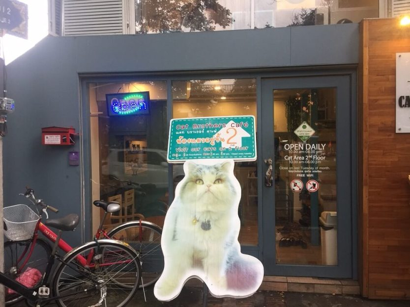 Cat Brothers Cafe Storefront