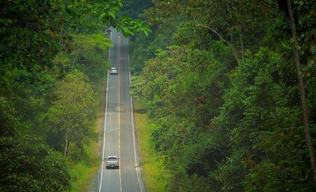 A road in Khao Yai National Par