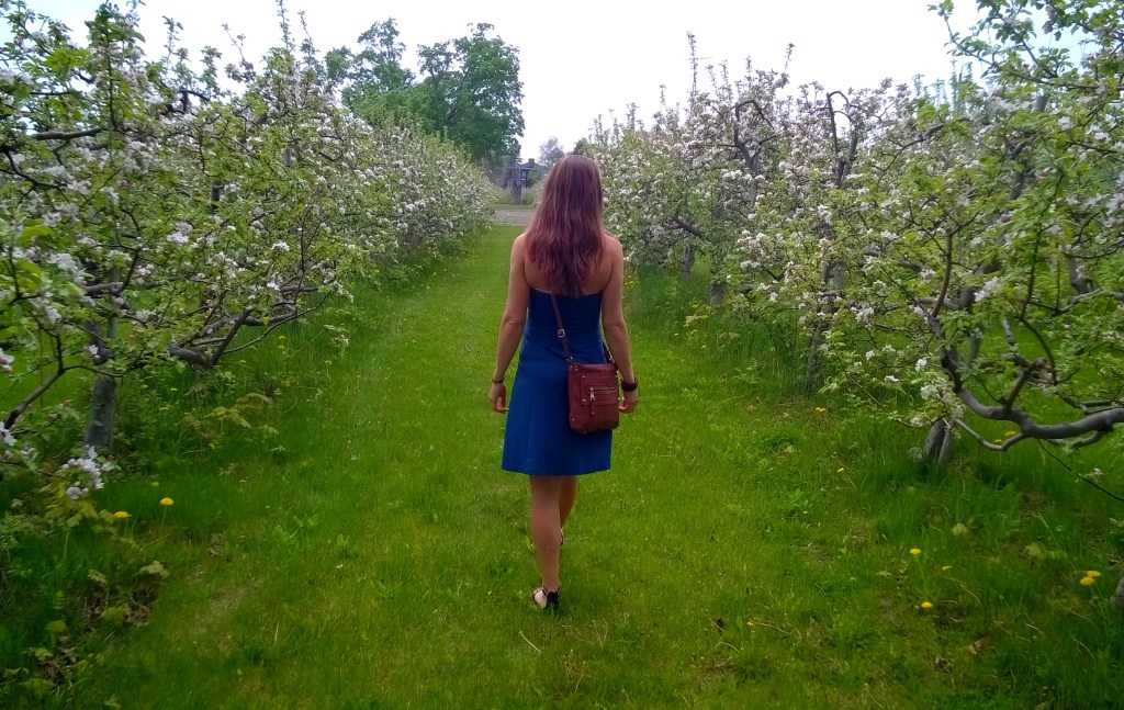 Who could resist a stroll through this beautiful orchard?