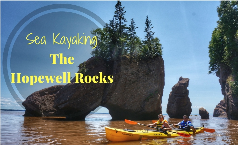 Sea Kayaking The Hopewell Rocks