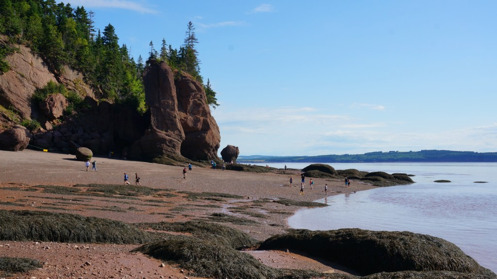 Exploring the Hopewell Rocks at low tide.