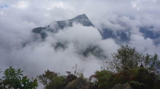 Our view of Machu Picchu from Huanya Picchu.