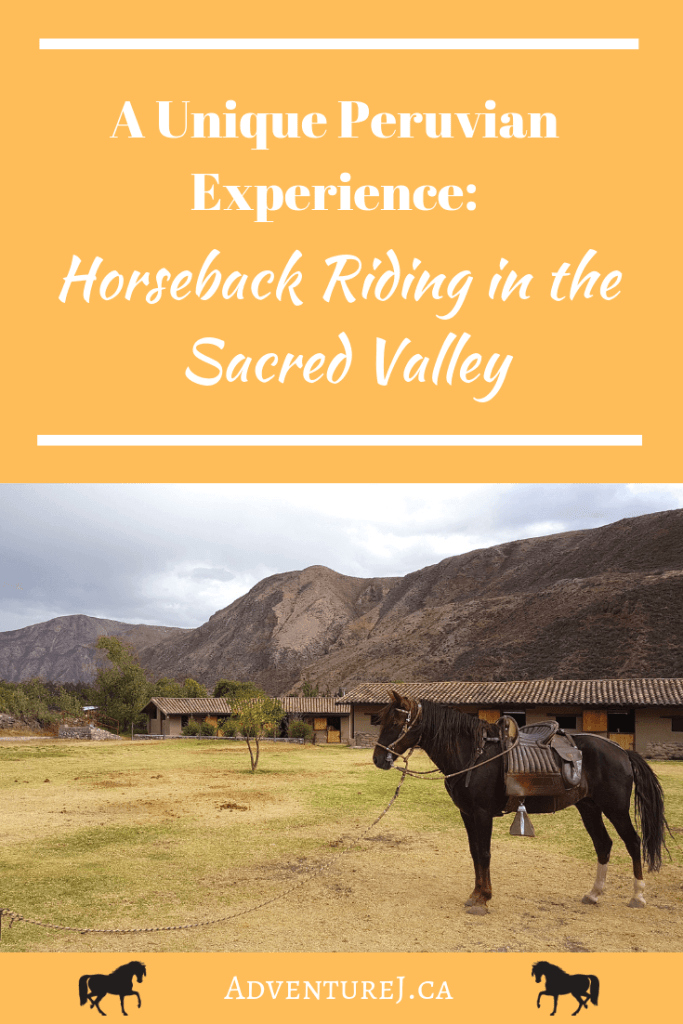 Horseback riding while traveling is a great way to explore a new country. What better way to explore the Sacred Valley than on the back of an authentic Peruivan Paso! #travel #wanderlust #horse #horses #horsebackriding #Peru #thinkworldtravel #outside #sacredvalley #southamerica #worldtravel