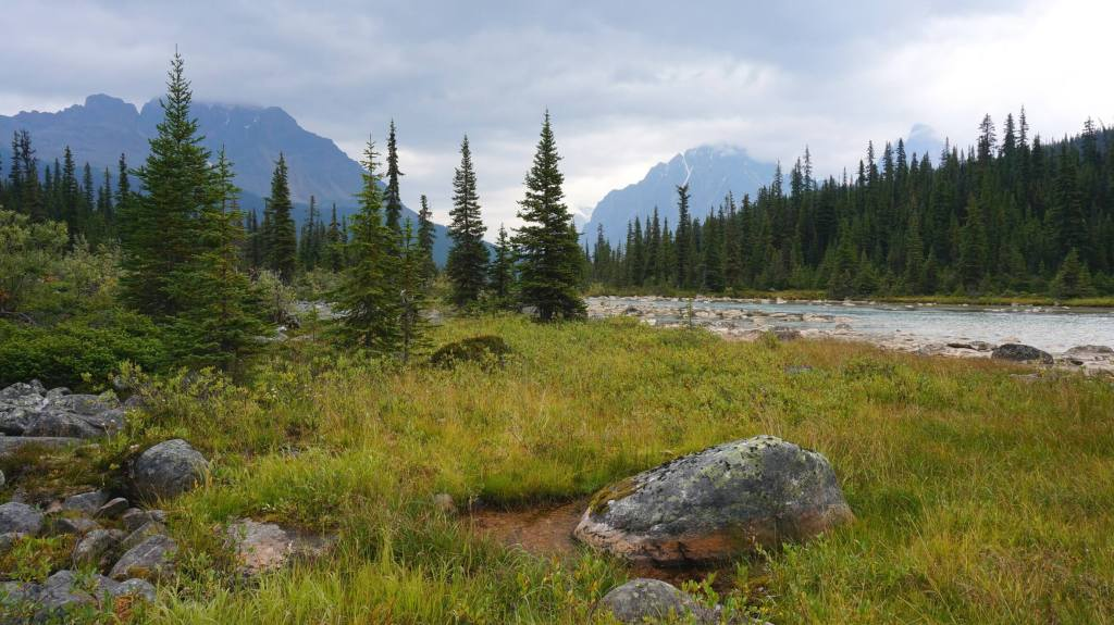 Tonquin Valley views.