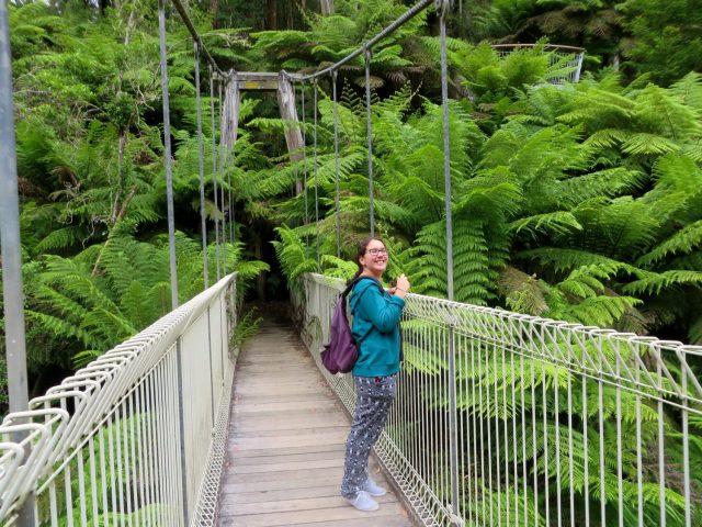 On the Swing Bridge at Tara Bulga National Park