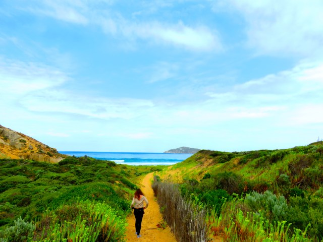 The walk to Squeaky Beach at Wilson's Promontory National Park