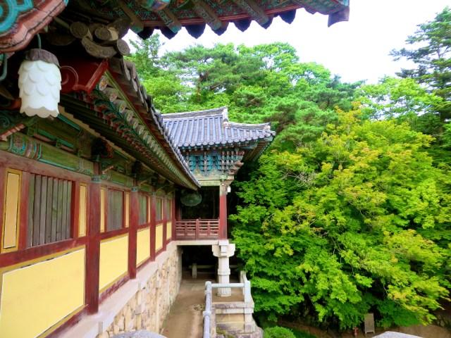 bulguksa temple gyeongju