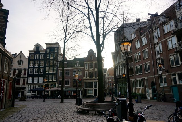 what to do in amsterdam bicycle tour