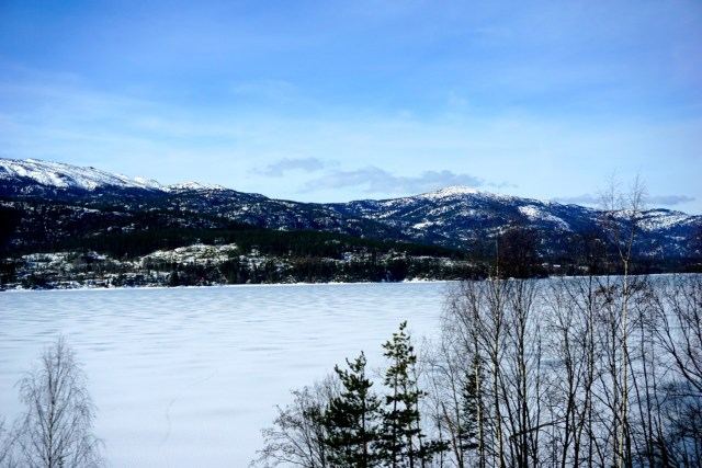 norway in a nutshell tour oslo to bergen