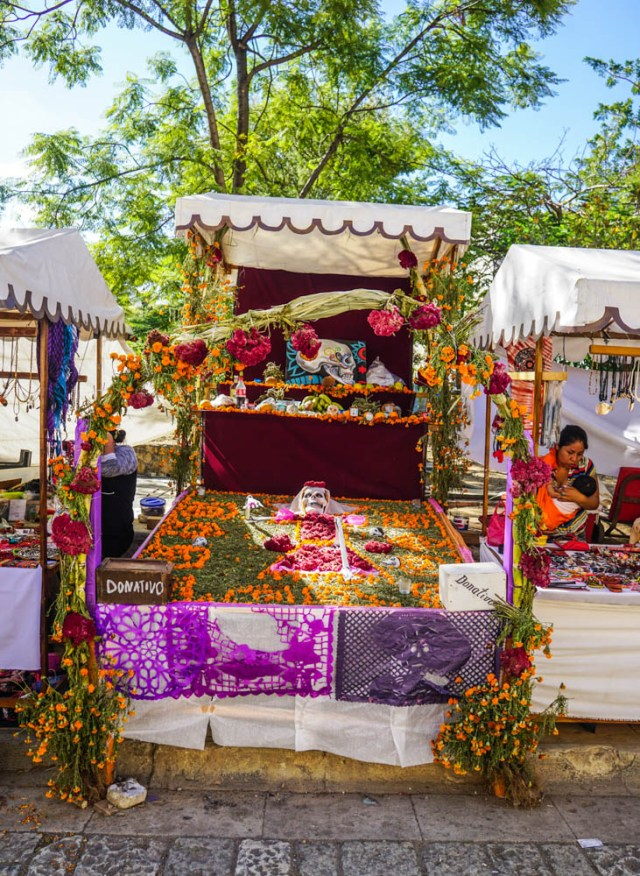 day of the dead in oaxaca mexico