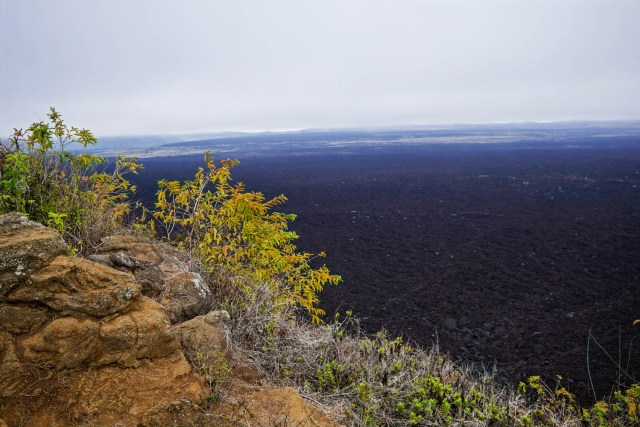 three days on isla isabela galapagos islands volcano hike sierra negra