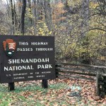 On the Road: Shenandoah Mountains
