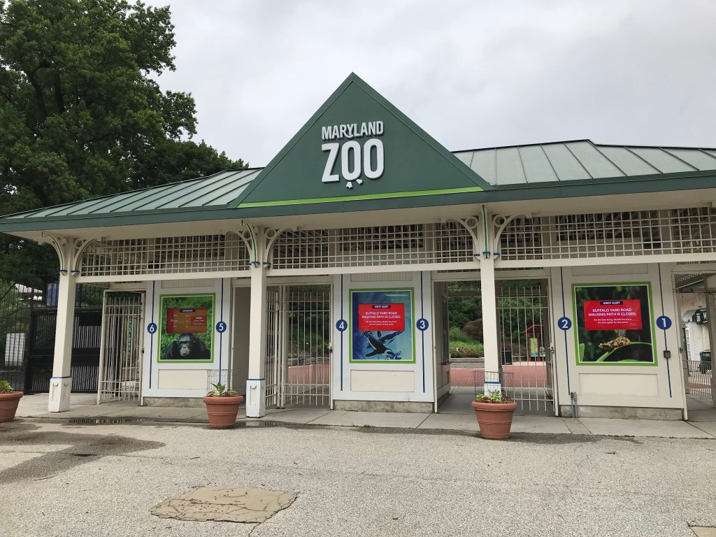 Wild Adventures At The Maryland Zoo In Baltimore