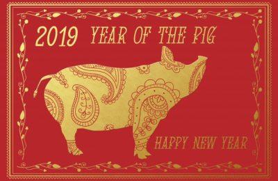 Potomac Library Chinese New Year Celebration!