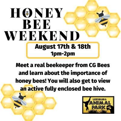 Honey Bee Weekend at Leesburg Animal Park