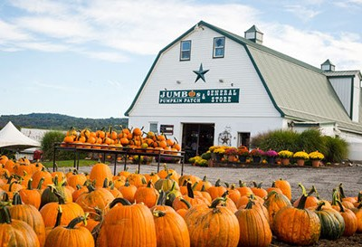 Jumbo's Pumpkin Patch Fall Festival