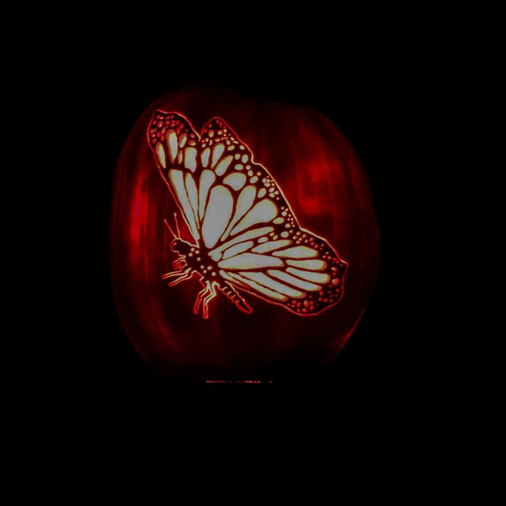 butterfly pumpkins