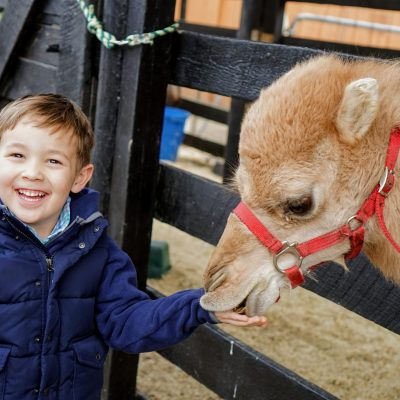 New Year's Discount Days at Leesburg Animal Park