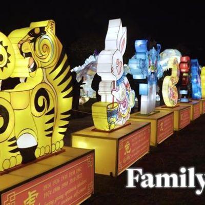 Lunar New Year: REACH Winter Lanterns (FREE)