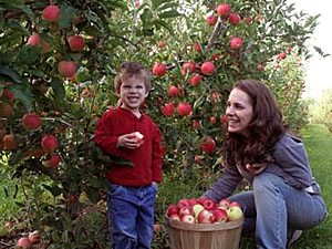 take the kids apple picking