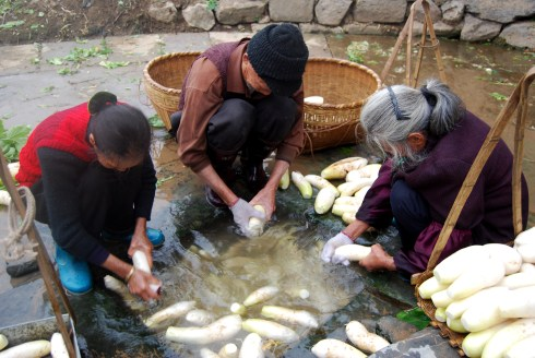 Cleaning Food in Fuli, China