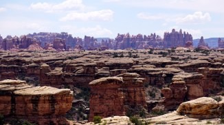 The Needles - Canyonlands National Park