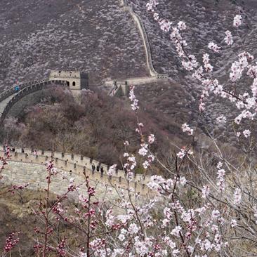 Beijing World Heritage